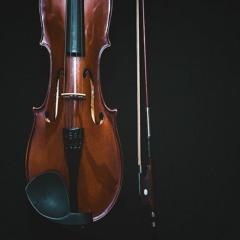 Strings For Vivaldi