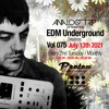 Download Analog Trip @ EDM Underground Sessions Vol075 | www.protonradio.com 13-07-2021 | Free Download Mp3