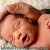 Dormir (Baby Songs to Sleep)