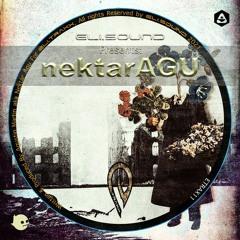 Nektar Agu - Diva (Dani Labb in DUB) [Eli.sound]