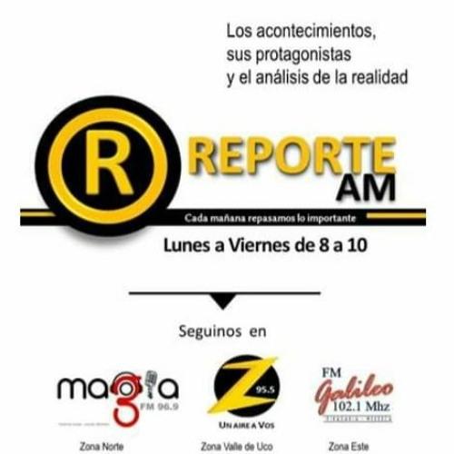 024 Reporte A Juan Pineda   Bibliotecario