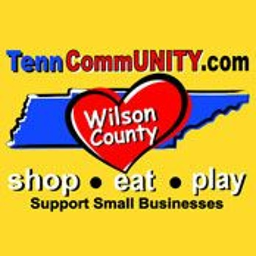 Special Edition:  Wilson County Small Business Help - TennCommUNITY