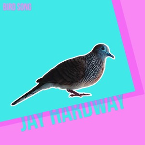 Jay Hardway - Bird Song [OUT NOW]