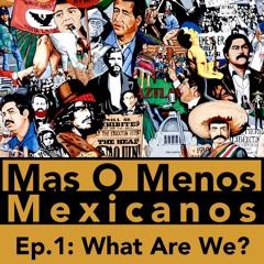 What Are We? - Mas O Menos Mexicanos: A Mexican Culture Podcast