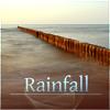 Nature Sounds Rain