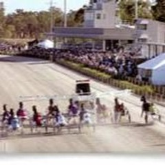 'Square Gaiters' - The Harness Racing Show - October 16, 2021