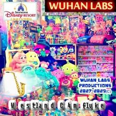 Wuhan Labs