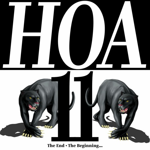 HOA011 The Mix