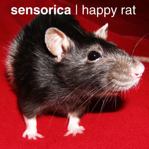 Happy Rat (Original Mix)