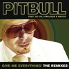 Give Me Everything (R3hab Remix) [feat. Ne-Yo, Afrojack & Nayer]