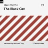The Black Cat (Part 33)