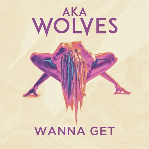 Wanna Get
