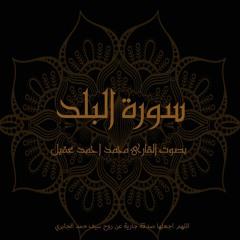 سورة البلد - تلاوة القارئ محمد أحمد عقيل