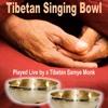 Tibetan Singing Bowl (Played Live by a Tibetan Samye Monk) [Continuous Session]