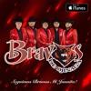Download Mas Alto Que Las Aguilas - Bravos de Ojinaga Mp3