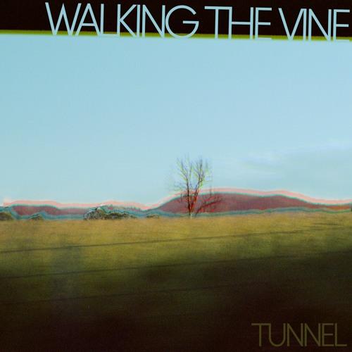 Walking The Vine