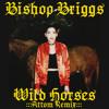 Wild Horses (Attom Remix)