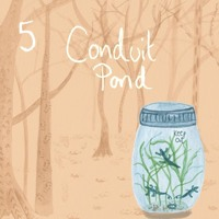 5. Conduit Pond