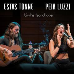 Bird's Teardrops by Estas Tonne & Peia Luzzi