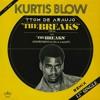 Download Kurtis Blow - The Breaks (TTom De Araujo Remix) Mp3
