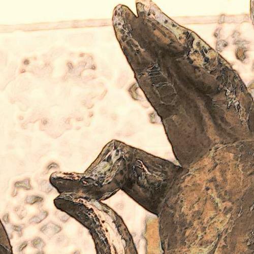 Nasreddin - der Narr - der Weise