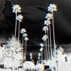 California Dremin' (Tech House Mix)