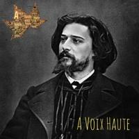 Alphonse Daudet -Lettres de Mon Moulin -Chapitre 23- Camargue - 5 - Le Vacares - Yannick Debain.