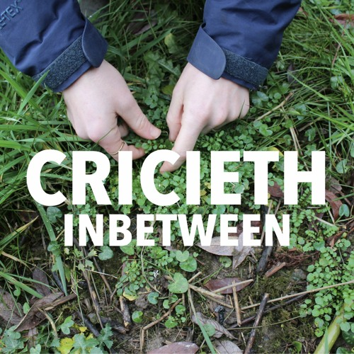 INBETWEEN: Criccieth
