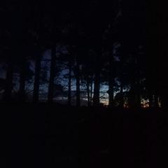 2021.08.29 Deep Creek Dawn. Late Winter. Excerpt 1.