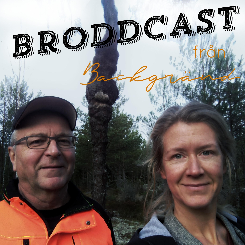 Broddcast#7: Kimmen i Kansbacka