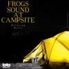 Frog Sound around Tent