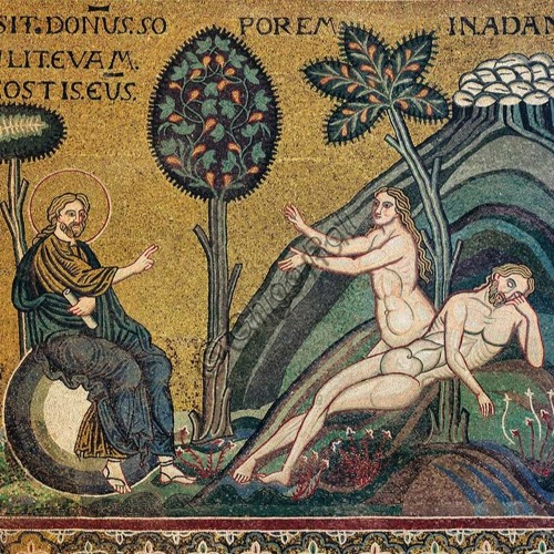Homily for the 27th Sunday in Ordinary Time