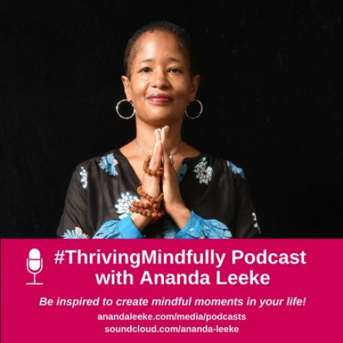 Thriving Mindfully S4 EP28: Mindful Self-Care Process for Stress & Burnout