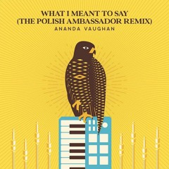 Ananda Vaughan - What I Meant To Say (The Polish Ambassador Remix)