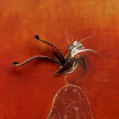 Brett Whiteley: Feathers and flight