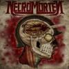 Thrash Metal mp3
