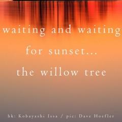 Boson Spin - Waiting for sunset [naviarhaiku357]