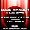 House Music Culture (feat. Chad Bishop) (Mixshow Edit)