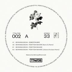 Premiere: Behrang & Sean - Poshtesh Bahare (Johanna Knutsson Remix) [TTNoTDB]