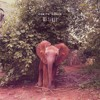 Damon Albarn Mr Tembo Album Cover
