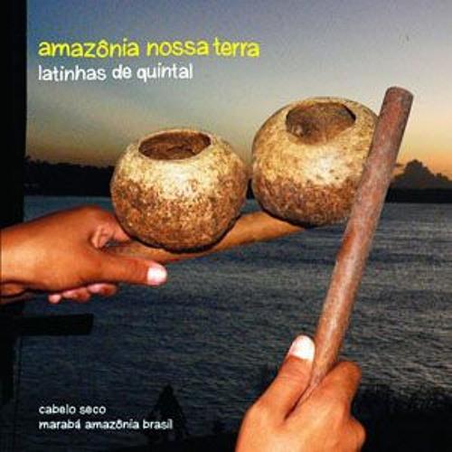 amazônia nossa terra - latinhas de quintal