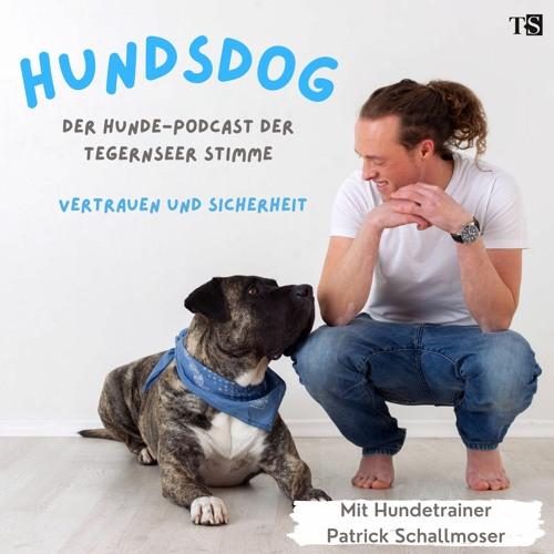 Hundsdog - der Hunde-Talk der Tegernseer Stimme - Episode 2