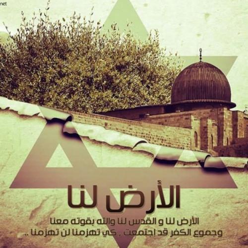 || الأرض لنا || نجوم غرباء للفن الإسلامي