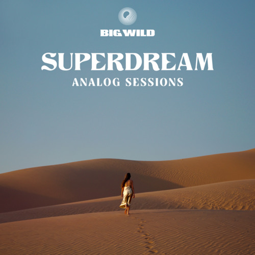No Words (Analog Sessions)