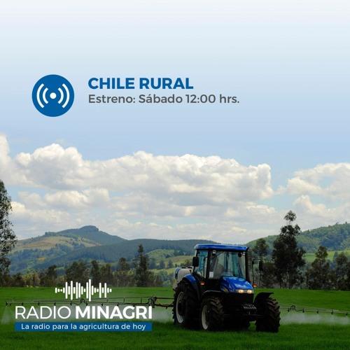 Chile Rural - Programa N° 61- Entrevista -Carlos Recondo, director nacional INDAP