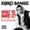 What Yo Name Iz? (feat. Wale, Big Sean and Bun B) (Remix)