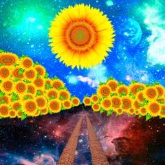Sol Girassol - Mashup (Laydee)