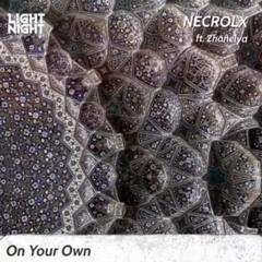On Your Own (ft. Zhanelya)