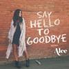 Say Hello To Goodbye (Remix)