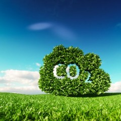 The Politically Messy Road to Carbon Dioxide Limits (Guest: Todd Myers)